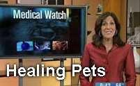 Dina-Bair-WGN-Medical-Watch